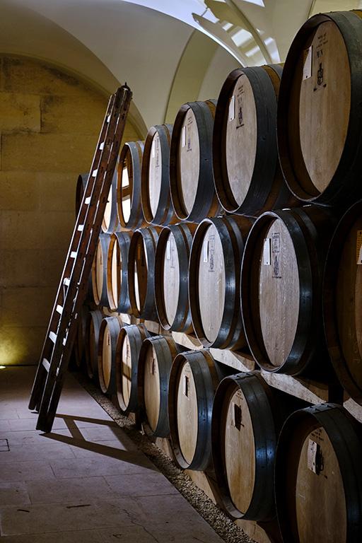 chai vignoble de Saint-Aubin