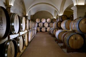 chai du vignoble de Saint-Aubin