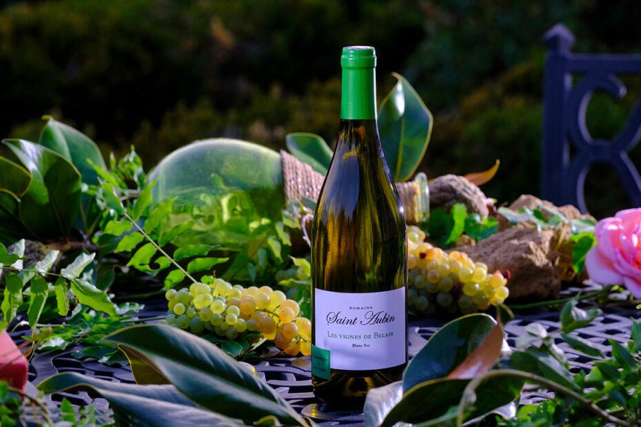 Vin blanc sec et fruité
